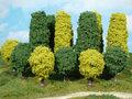Bomen-en-Heggen