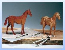 Race Paard