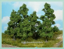 5 Fruitbomen