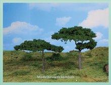 2 Pinebomen