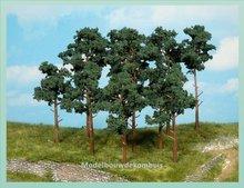 4 Dennenbomen