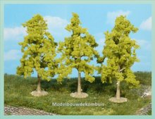 3 Lijsterbesbomen