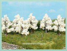 6 Appelbomen Bloeiend