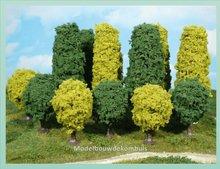 4 Laanbomen groen