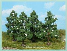 4 Fruitbomen