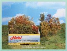 Bladeren Bomen en struiken  herstachtig