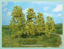 Bomen Natuur Helgroen