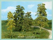 Midgroen Bladeren Bomen Struiken
