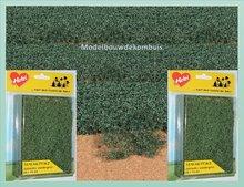 Weide Groen Gebladerte