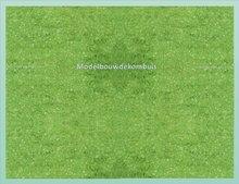 Licht Groen Bosgrond