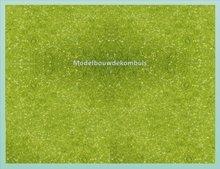 Middel Groen Bosgrond