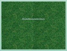 Donker Groen Bosgrond