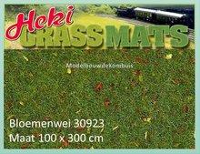 100 x 300 Bloemenwei