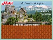 Tunnelsteen 25x50 cm