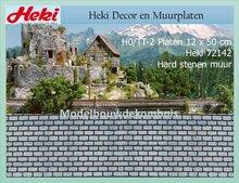 Hard steen 12x50 cm