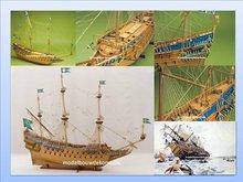 Vasa (wasa)